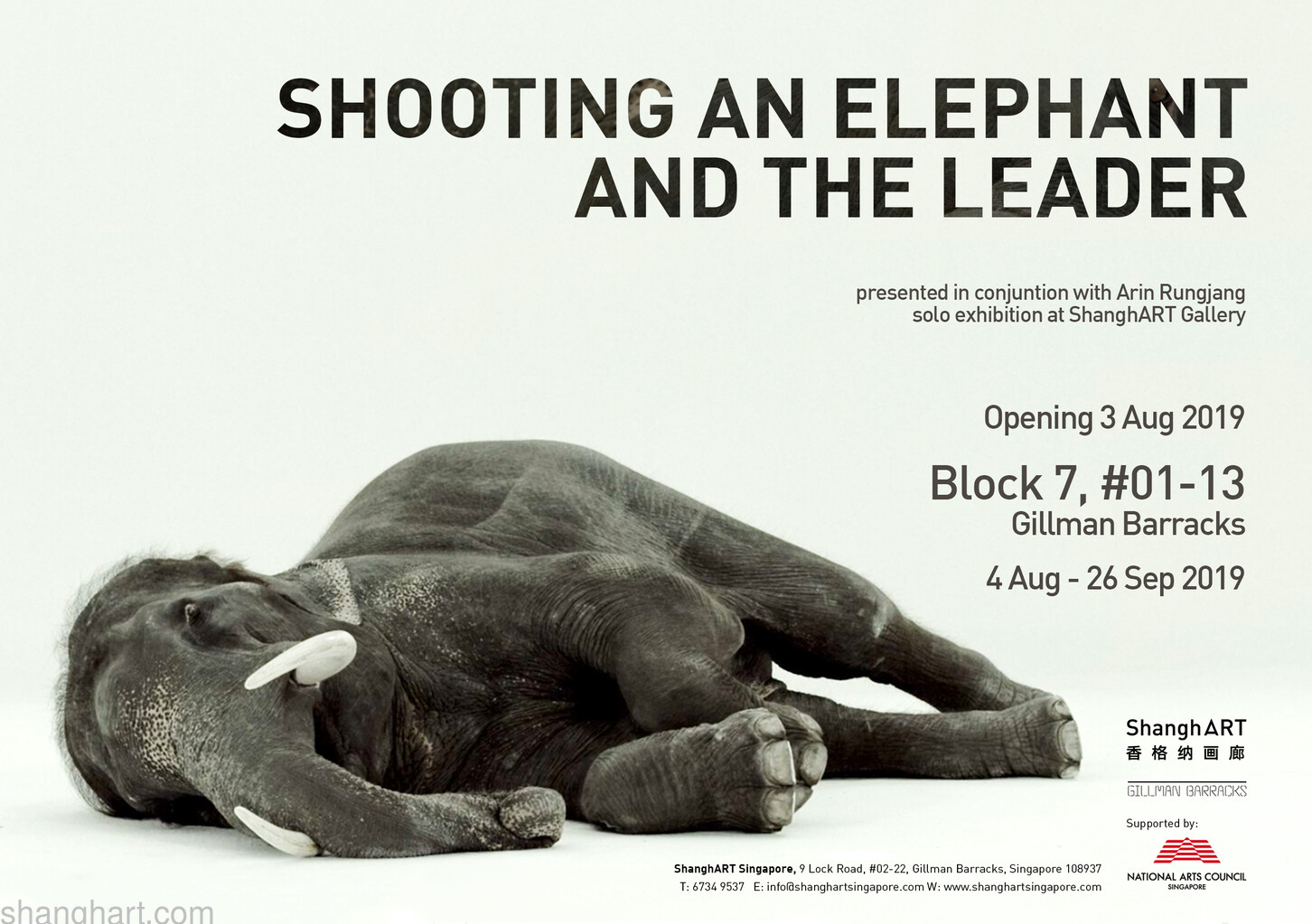 Shooting an Elephant and The Leader