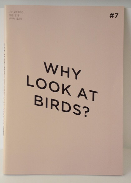 Why Look at Birds?